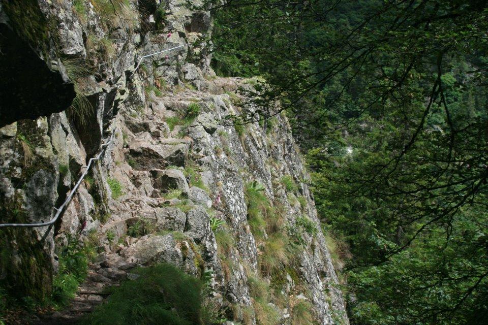 sentier des roches à La Schlucht