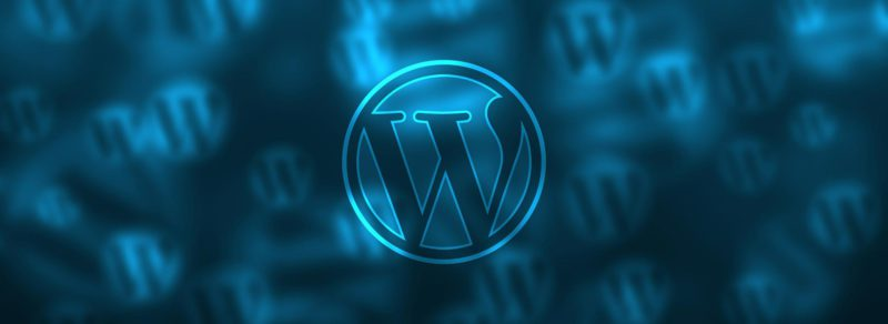 site pro sous wordpress
